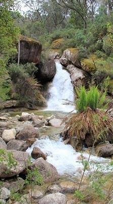 Ladies Bath Falls  Mt Buffalo Road, Porepunkah    Walking track is 400m Park at the Eurobin Falls Picnic Area sign on the left hand side