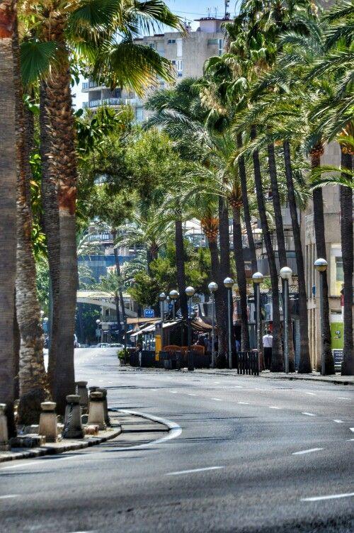Avinguda de Gabriel Roca