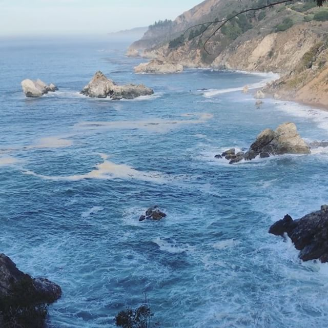 I woke up missing Big Sur 😌 // #love#wander#travel#doubletap#beautiful#happiness#chill#escape#peace#goodvibesonly#grateful#roadtrip#amazing#escape#caliliving#bigsur#pch#photography#sunset#sunday#holidays#luxintravel#go#beachlife#beach#run#creative#inspiration#b_angshoots #calocals - posted by bethaney ang https://www.instagram.com/b_ang - See more of Big Sur, CA at http://bigsurlocals.com