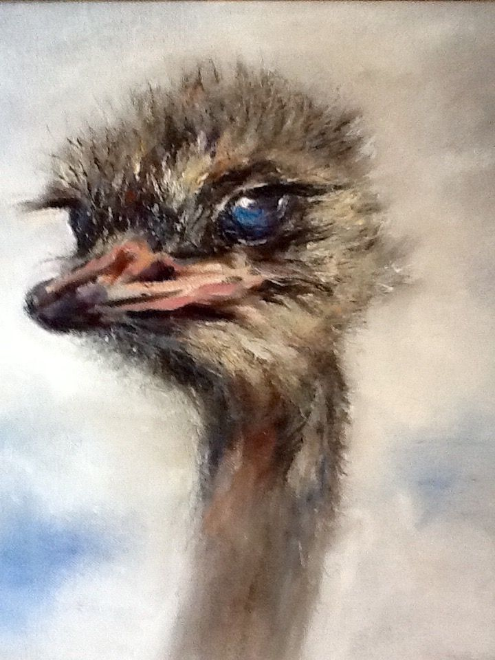 Ostrich Cape SA (oil) Jean Weir