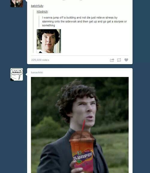 This fandom is nuts but occasionally it makes me laugh-not just want to cry over their insanity.:)