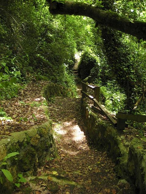 Passage towards Theogefiro, Epirus, Greece
