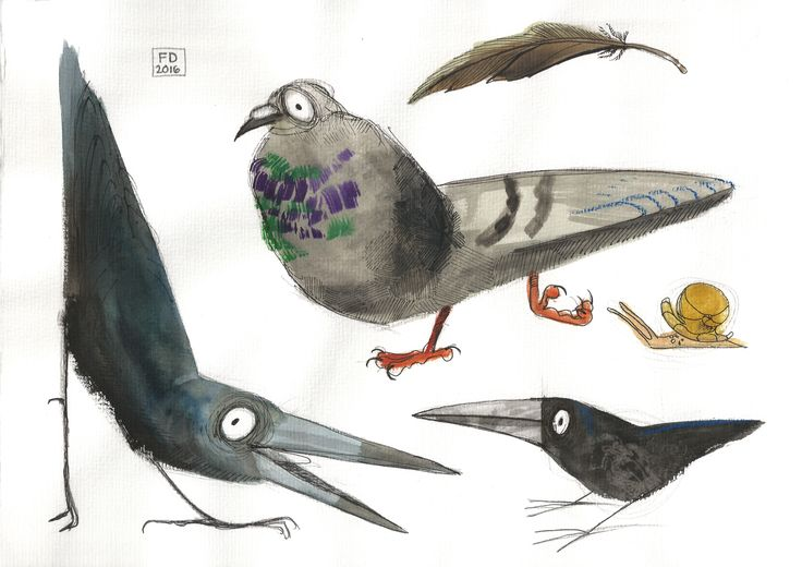 Birds of the town / crow snail pigeon feather aquarell watercolor drawing painting character design /