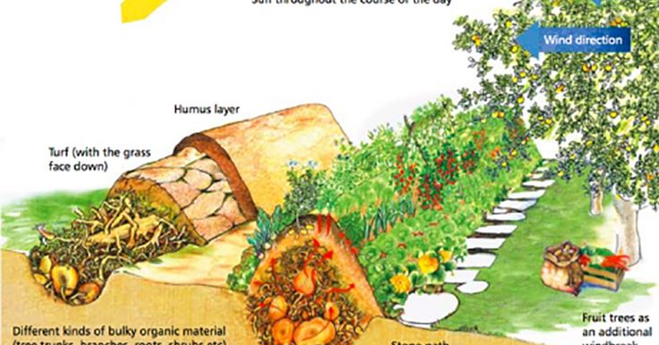 Hugelkultur is a type of raised bed that does a fantastic job at holding moisture, allowing fertility, maximizing space and... well, I guess the list goes on and on! With this post, learn more about the practice of hugelkultur gardening and the many benefits that come with it...