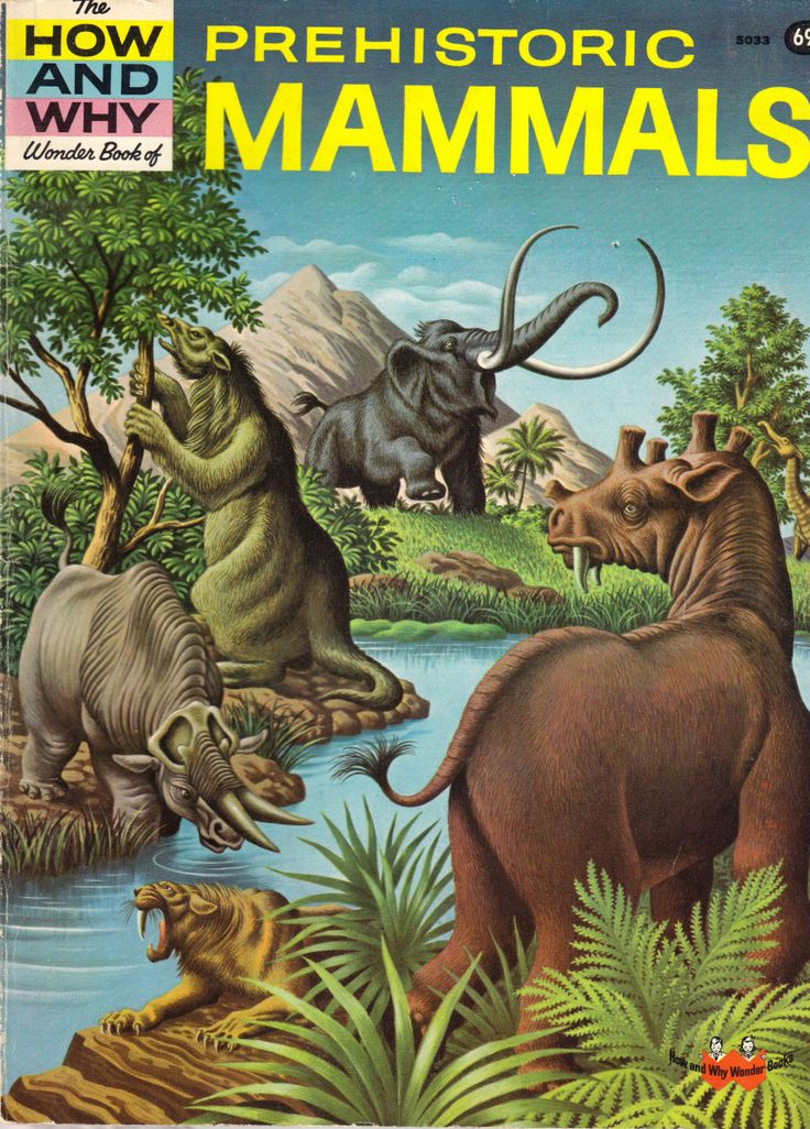 Prehistoric Mammals - 5033 in 2019 | Wonder book ...