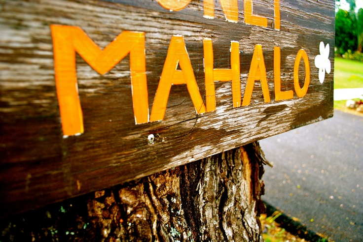 37 Best Images About Mahalo On Pinterest Music Videos
