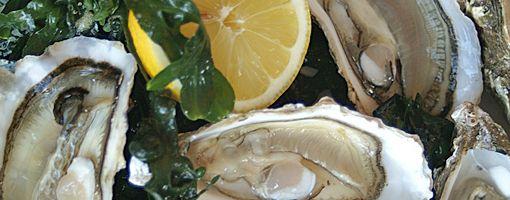 De Oesterbar Amsterdam - Seafood restaurant Oysterbar
