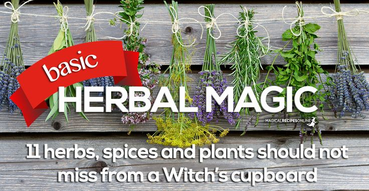 Herbal Magic is a very powerful form of Natural Magic. It can be used by anyone with little supplies and have remarkable results. 11 essential magical herbs
