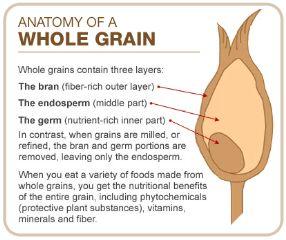 20 best MyPyramid - Grains images on Pinterest | Health foods ...