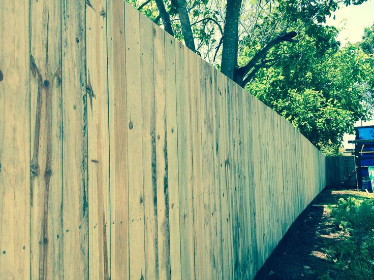 1800mm high butted timber fence with treated pine palings north of Brisbane
