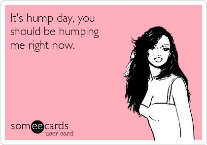 It's hump day, you should be humping me right now.