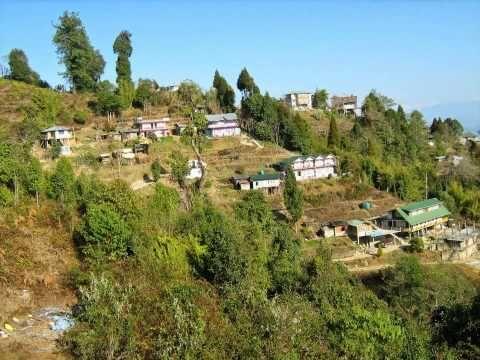 Eye soothing beautIiful landscape of Hiimalaya - RISHOP, North Bengal