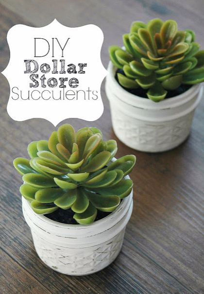 Quick and Easy Dollar Store Succulents – #DIY&CRA…