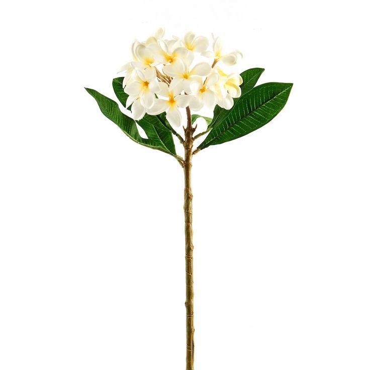 White Frangipani Stem By Ashland Frangipani Artificial Flowers Plumeria Bouquet