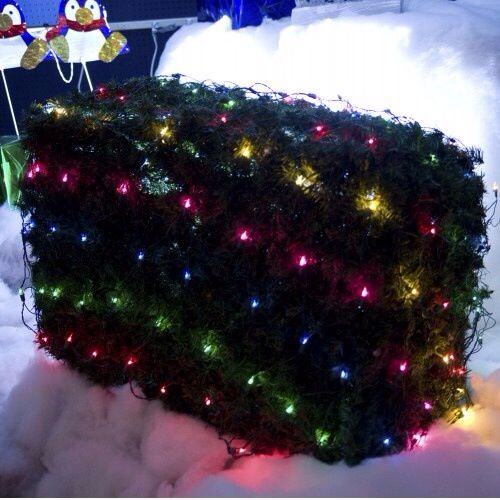 Pin by Kindy\u0027s Factory Outlet on Christmas Lighting Ideas Lighting