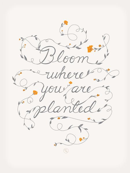 Bloom Art Print. love the vine calligraphy.