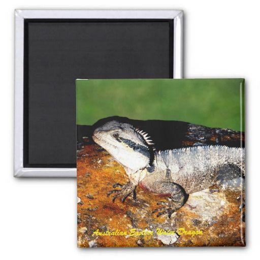 Australian Eastern Water Dragon 2 Inch Square Magnet