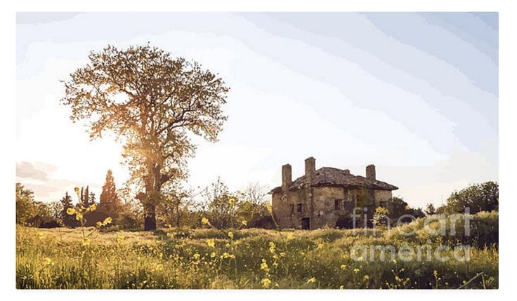 This magnificent old farmhouse will have so many stories to tell! And what an idyllic setting! I love nostalgic images like this one. I have added a light painterly effect to add to it's age. I also like the softness of the colours, it must be France!