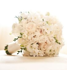 TheKnot.com - Wedding Planning - Wedding Ideas- Wedding Dresses.  I was thinking something like this for my bouquet.  I like that it's white, tightly packed.  I like the roses and the 'wedding flower', not sure what it's called though.  Don't want a lot of greenery in the bouquets.