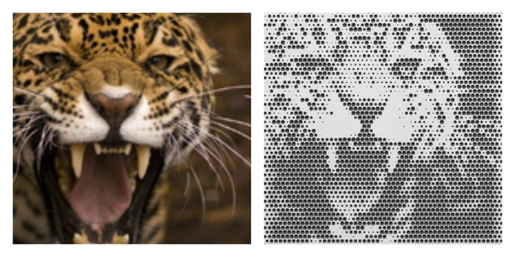 Mill your favorite pictures into wood with the online web-app from #Halvtone #leopard #wild #nature #animal #blackwhite #wood #interior #design #living #milling #CNC #machine #webapp