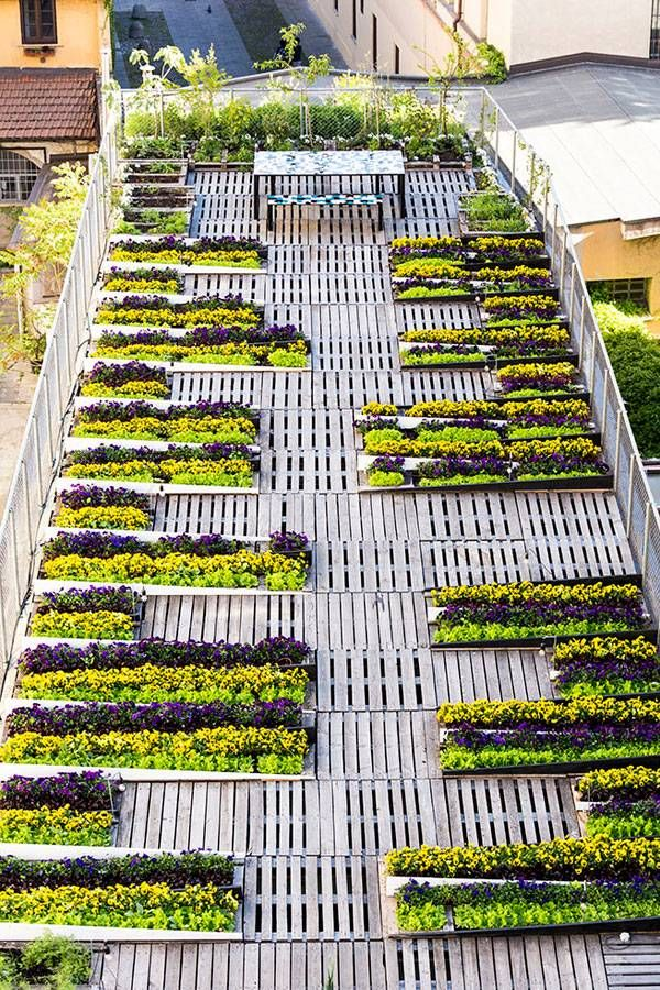 Best 78 Green Roofs images on Pinterest Architecture