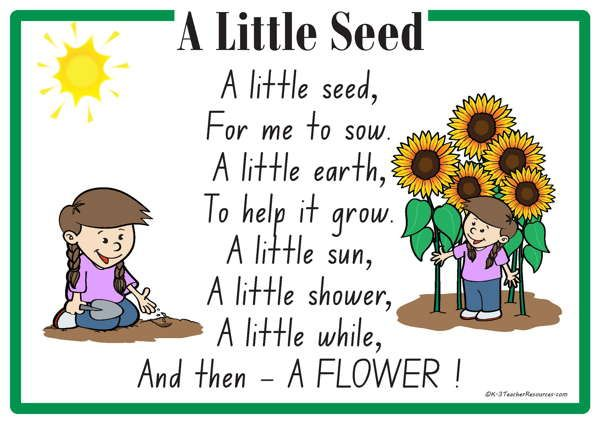 A Little Seed Rhyme A Printable Nursery Rhyme Great For