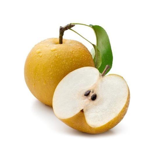 Location? Anyone asian pear tree height yıllar
