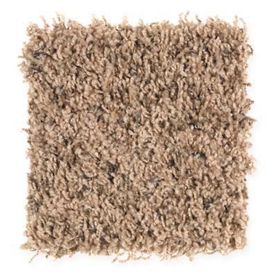 17 Best images about Mohawk Carpet on Pinterest