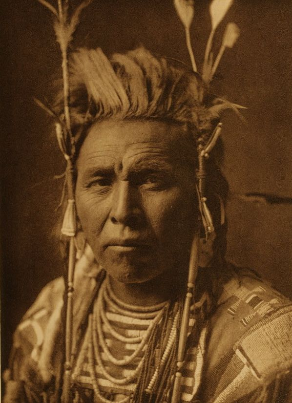 Spotted Jack Rabbit, Apsaroke, 1908