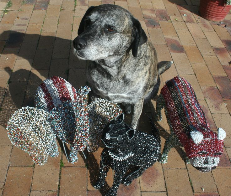Ginger and her beaded friends.