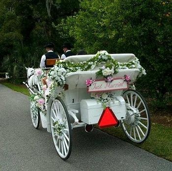Beautiful Fl Decor On The Horse And Carriage From A Leu Gardens Wedding In Orlando