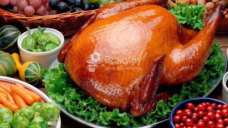 Индейка на День Благодарения: пошаговый рецепт приготовления с фото. Ингридиенты рассола, сколько вымачивать, секреты приготовления, как фаршировать