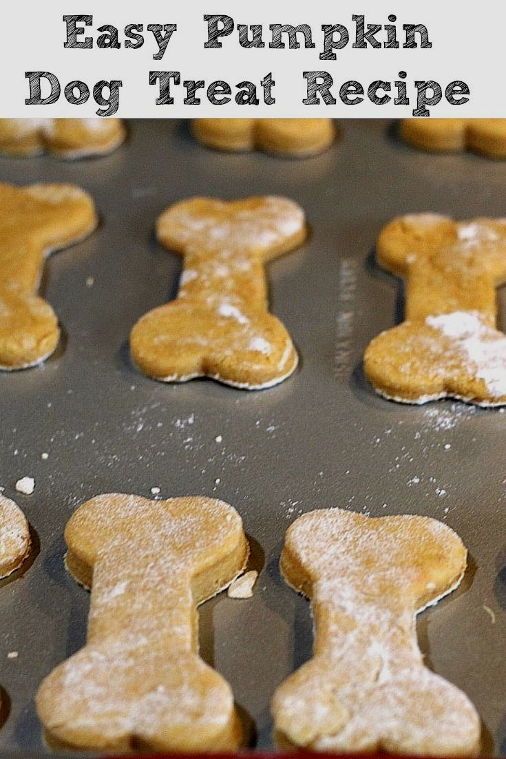 Pin By Jane J Schneider On Dogs Dog Biscuit Recipes Dog Cookie