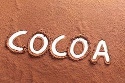 Naturefood Company, Hazelnut spread, Sugar free chocolate spread