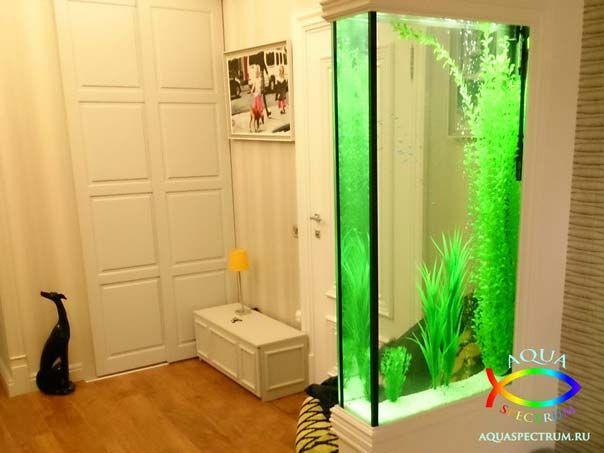 Пресноводный аквариум 170л. установленный в перегородку