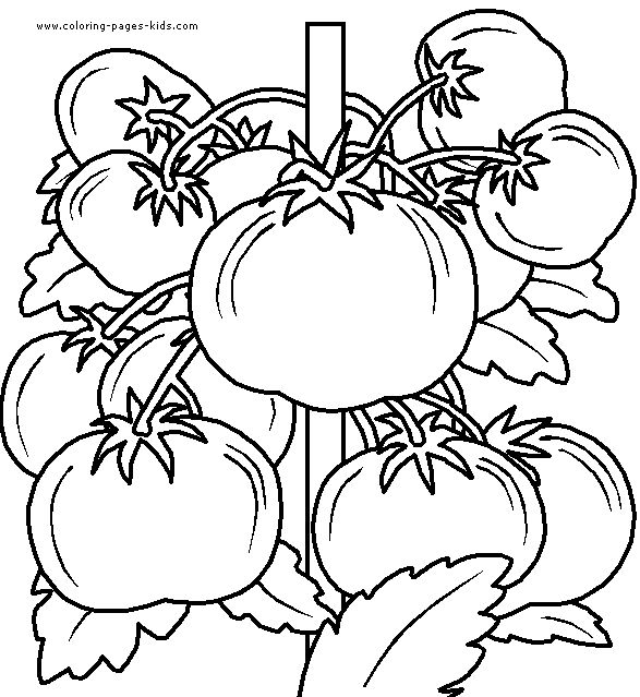 Fruits And Vegetables Coloring Page 41 Is A From Fruit BookLet Your Children Express Their Imagination When They Color The