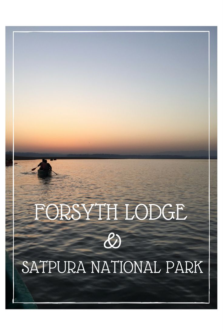 http://thetinytaster.com/2017/05/10/why-you-need-to-visit-forsyth-lodge-and-the-satpura-national-park/