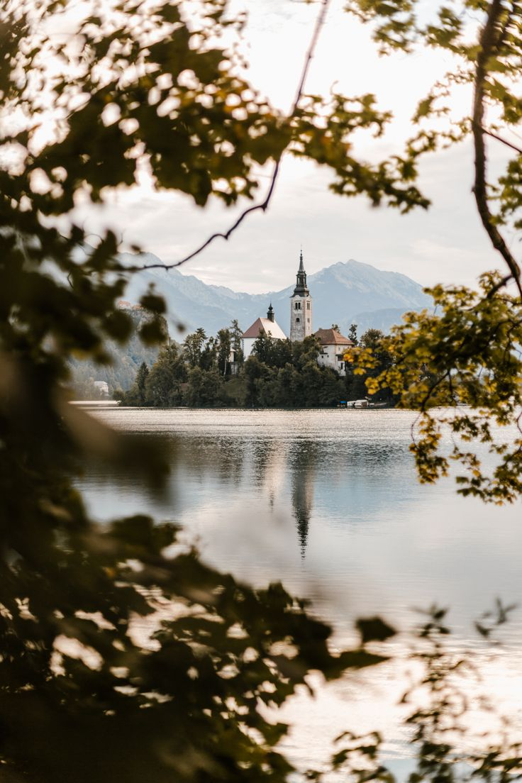 Lake Bled, Slovenia. photo by @terumenclova
