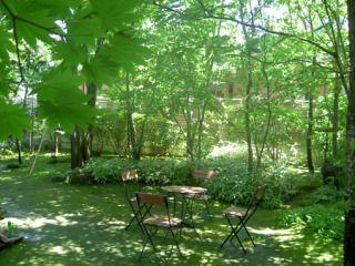 雑木の庭 - Yahoo!検索(画像)