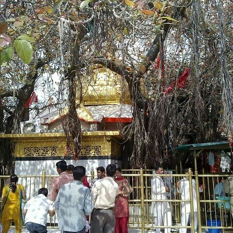 #ChintpurniMataTemple is one of the major #pilgrimagesites located in #Unadistrict of #HimachalPradesh. This temple is surrounded near the Punjab state. The temple dedicated to Mata Chintpurni Devi which is must visit sites on the eve of Navratra festival.