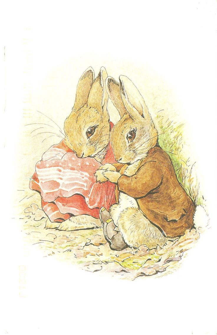 'The Tale of Benjamin Bunny' by Beatrix Potter