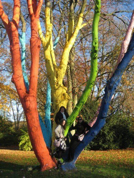 17 Best Ideas For Dead Trees Images On Pinterest Tree