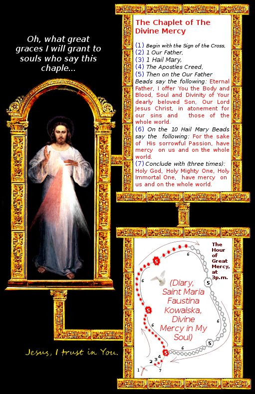 Divina Misericordia : The Chaplet of The Divine Mercy