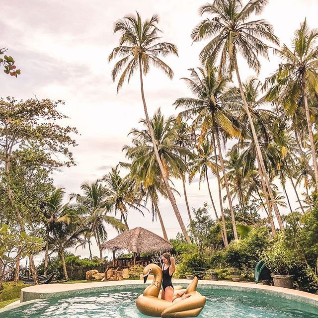 Wherever I am in the world, I try to ensure I am never too far away from a giant inflatable swan! Enjoying the pool @meda_gedara_villa_ ⠀ ✧✧✧✧✧⠀ ⠀ If you want to join me in Sri Lanka or another destination you can express interest in future @travelgirlsgetaways trips now! Or book your place on our Bali Retreats in October and our Malawi Safari & Charity Trip in September now on https://Getaways.WeAreTravelGirls.com. Link in my bio. ⠀ ⠀ ✧✧✧✧✧⠀ ⠀ #travelgirlsgetaways #wearetravelgirls…
