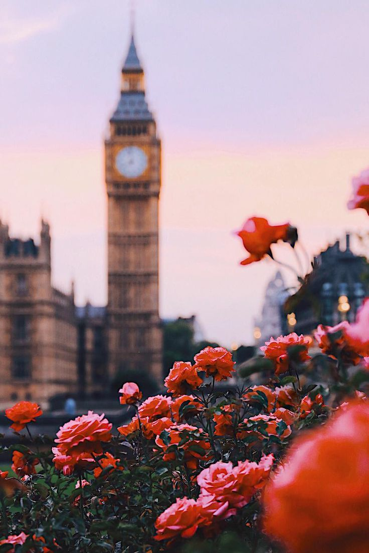 "banshy:  "" London, United Kingdom by: James Relf Dyer  """