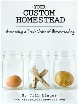 A fresh vision for homesteading (even for city girls)!