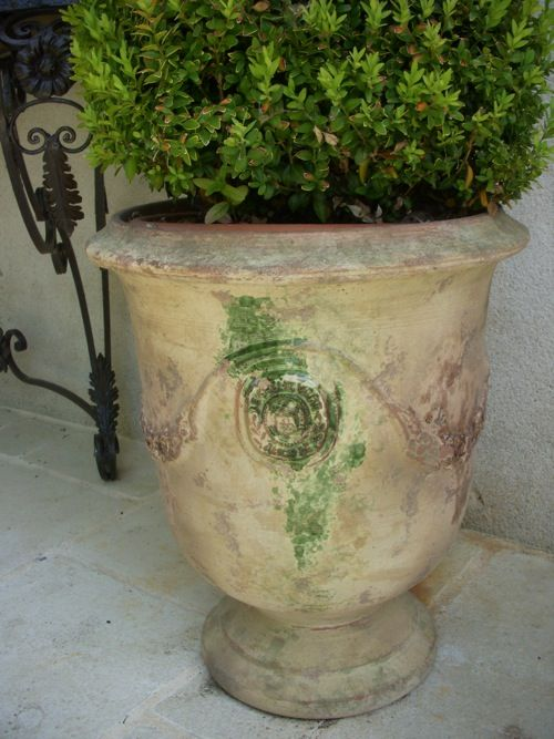 Anduze Pots With Boxwood, Loire Valley France Love, Boxwood In These