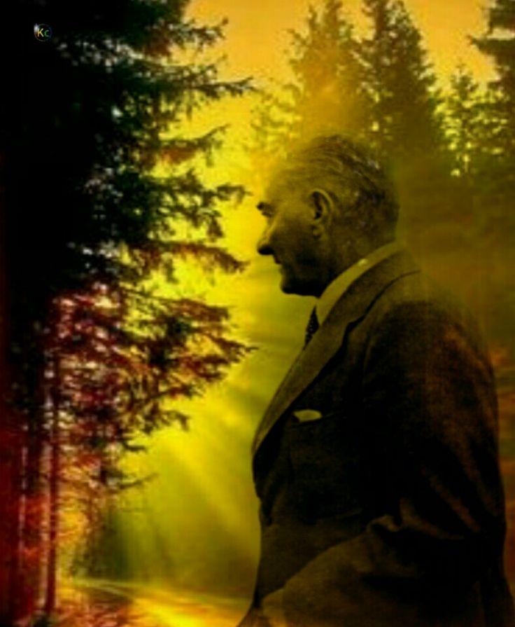 Ata'mızın ağaç ve yeşillik sevgisi, yalnız Ankara ya has bir özlem değildi. Bu vatan, çocuklarımız ve torunlarımız için cennet yapılmaya değer diyen Atatürk ün özlemi, tüm ülkeyi ağaçlandırmaktı, yeşillendirmekti.