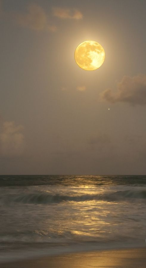 The massive harvest moon and Jupiter  over the ocean in Jensen Beach, Florida