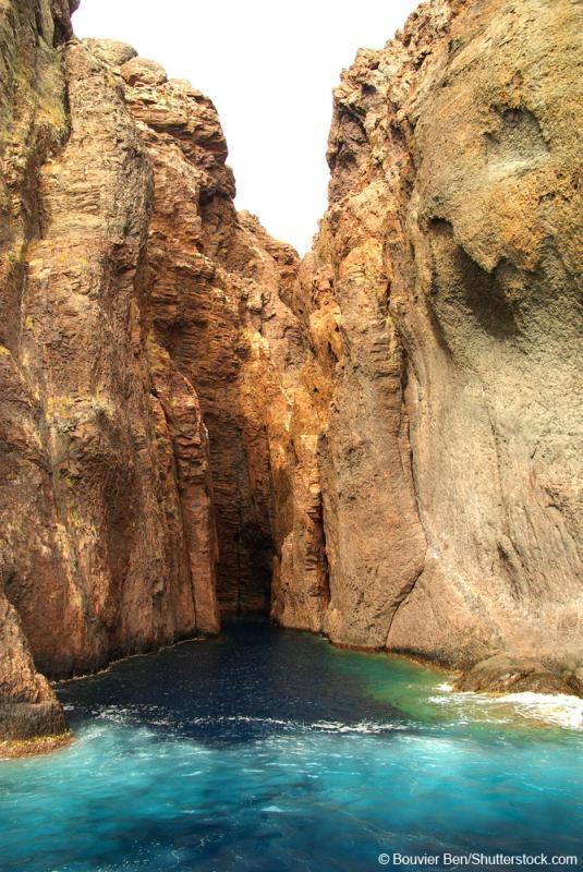 La réserve naturelle de la presqu'île de Scandola protège 900 ha terrestres et 1000 ha marins et abrite des espèces endémiques de la Méditerranée.